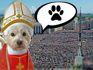 Doggism