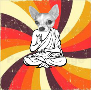 Zen Pup