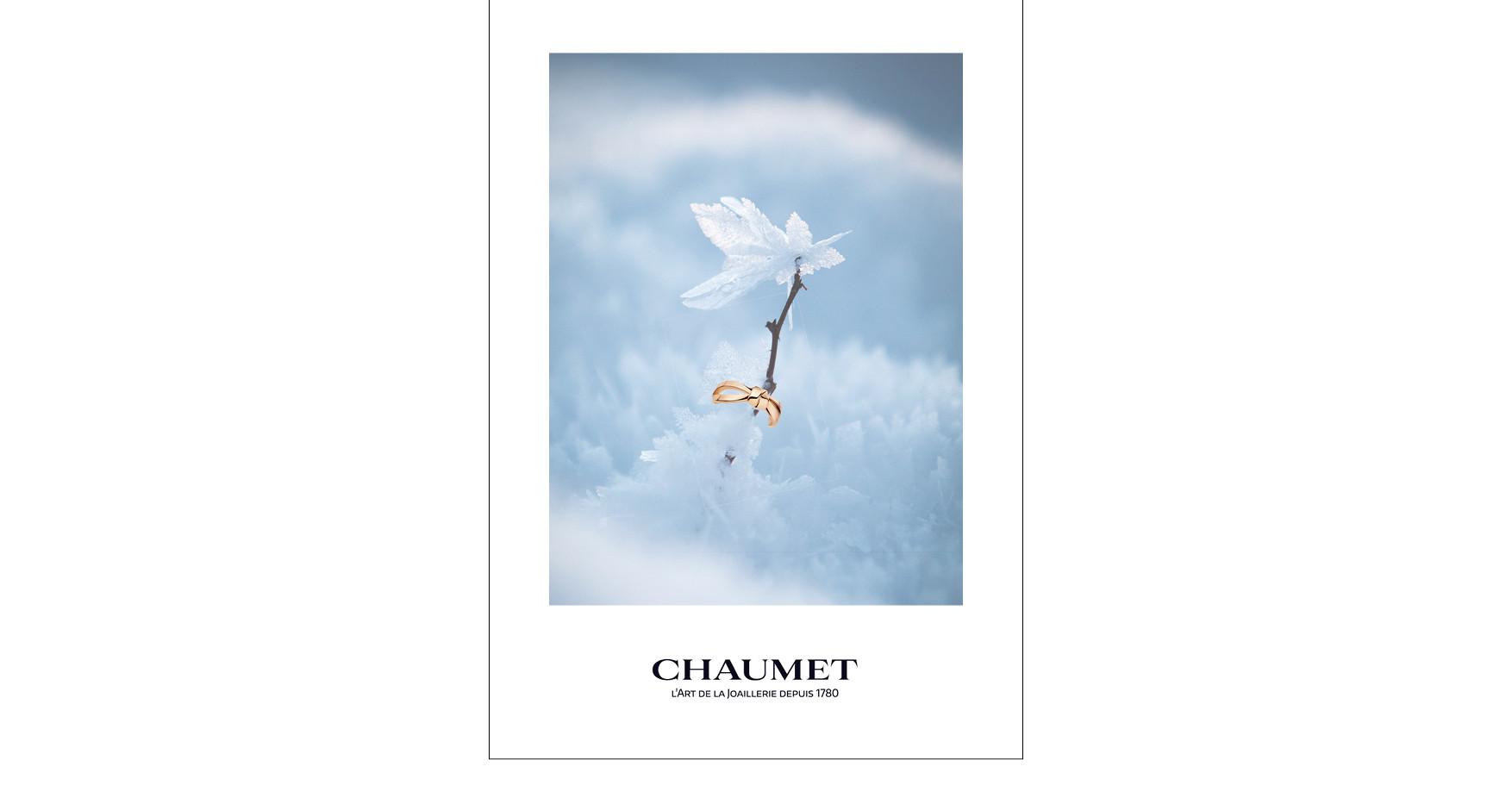 prez_chaumet_synthèse14.jpg
