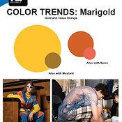 Color Trends 5.jpg