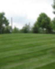 gg solar - lawn service .jpeg
