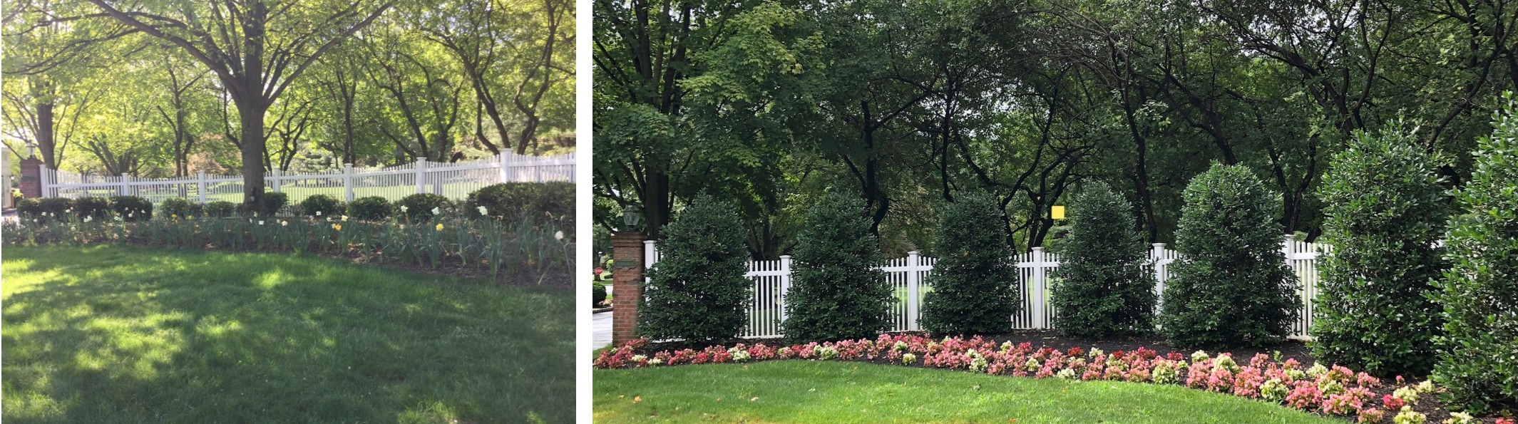 Entrance - Before & After