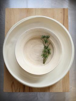 natural matt bowl gloss plate
