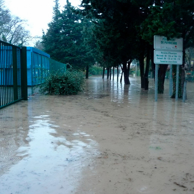 Avenue Jacques de Régis - déchets verts