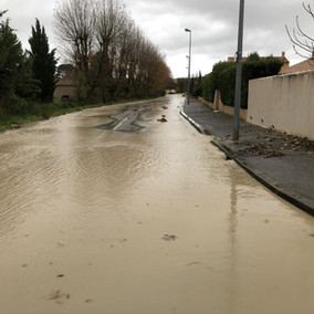 Avenue Georges de Fabry