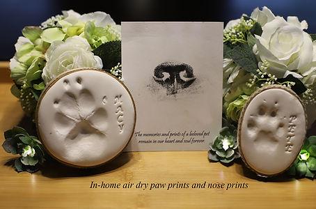 paw prints and nose prints.jpg