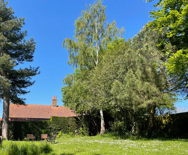 Spacious & secluded back garden