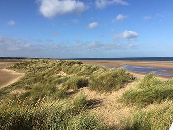 dunes6_edited_edited.jpg