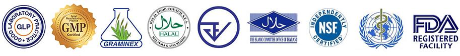 logo-gmp.png