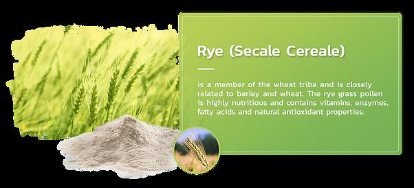 rye-grass.png