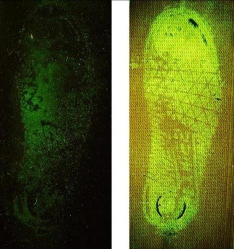 Hemascein uygulaması ile farklı kumaşlarda bulunan kanlı ayakkabı izlerinin görünür hale getirilmesi