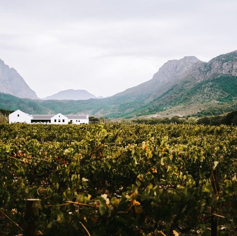 This Weekend We Virtually Visited Franschhoek