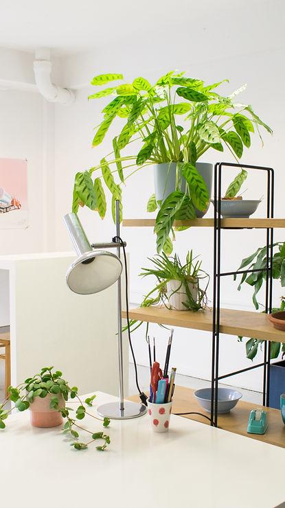 studio-maas-werkplek.jpg