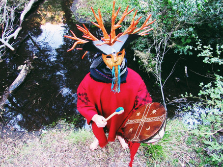 Bosquemar capta los sonidos de la naturaleza y los traduce a un lenguaje electrónico latino.