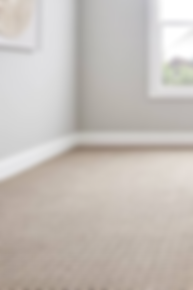 Tompkins Flooring Carpet