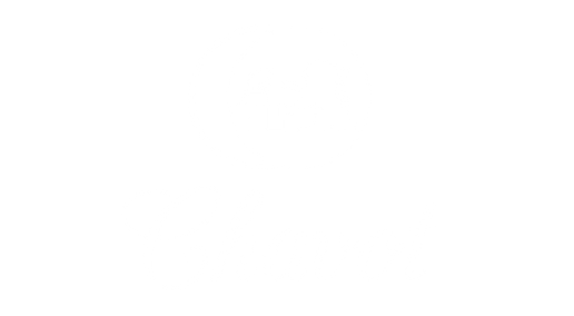 CHAVOTLOGO-11.png