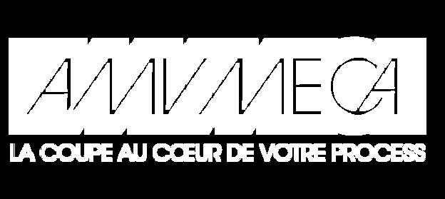 amvmeca-11.png
