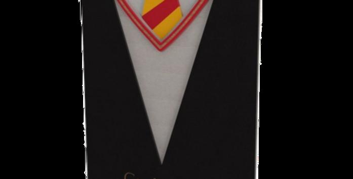 Quadro Harry Potter Grifinória - 40x28cm