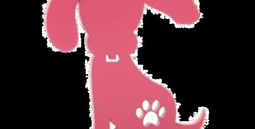 Animal Decorativo Cachorro - 25x23cm