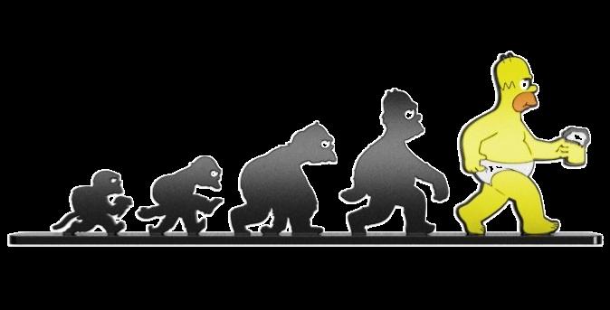 Objeto Evolução  Homer Simpson - 13,4x41cm