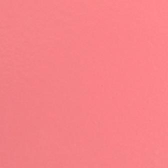 12 - Rosa.jpg