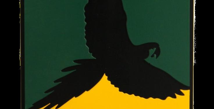 Quadro Pássaro Arara - 30x30cm