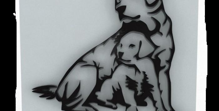 Quadro Cachorro Golden - 40x40cm