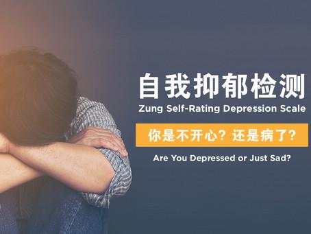 Self-Rating Depression Scale 自我抑郁检测