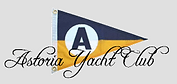 ayc logo with altered background.png