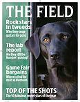 The Field Magazine 2014