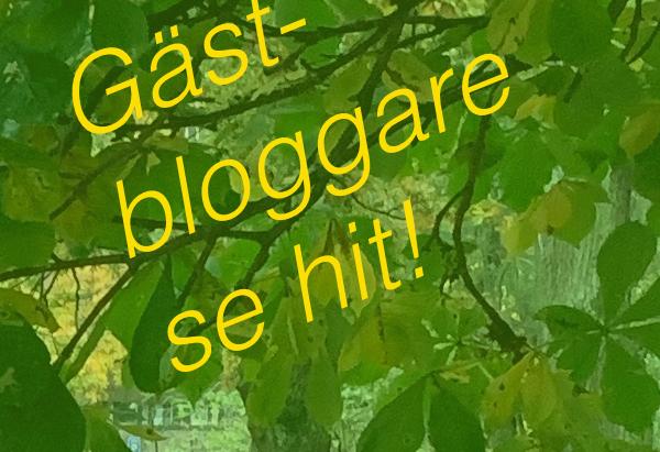 Gästbloggare sökes