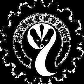 SkunkWorks1.png