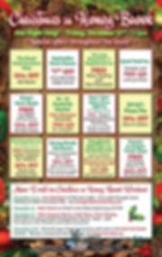 stp Christmas in Honey Brook 2019 Ad Med