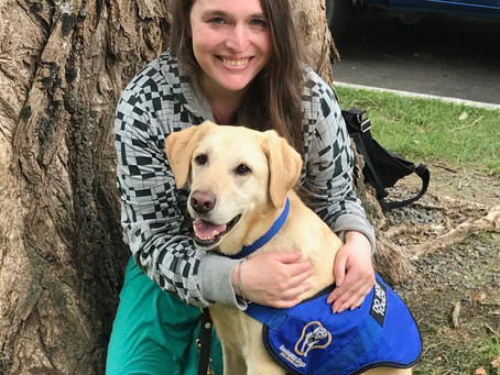Assistance Dog helps Wellington writer with sleep disorder and temporary blindness