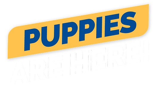 Puppies_are_here.png