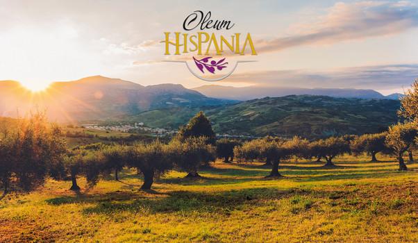 olive-oil-scenic