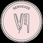 Icono-servicios.png