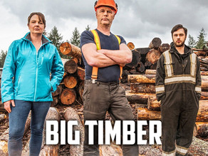 Big Timber: The process a tree goes through before it can be used for your project