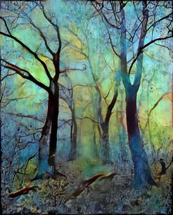 blue fog forest
