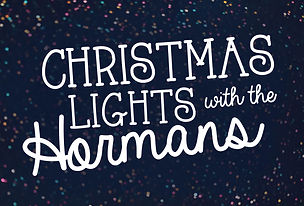 ChristmasLights_LED 1.jpg