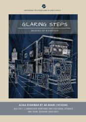 GLARING STEPS