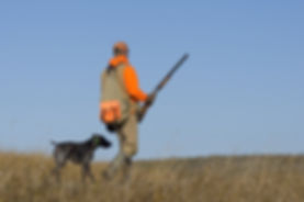Out Pheasant Hunting.jpg