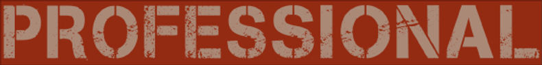 LogoProfessional_dark.jpg