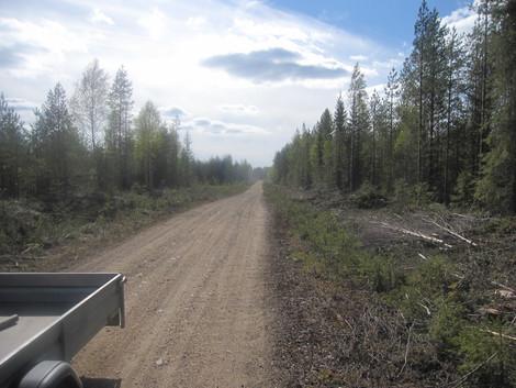 Pohjois-Iin metsätiehanke: Pääurakoitsija on valittu