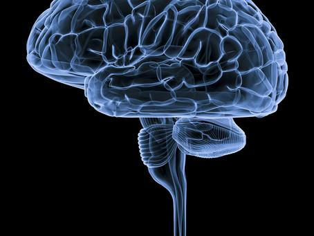 Anticonvulsivante na gestação ligado a maior risco de distúrbios neurológicos na prole