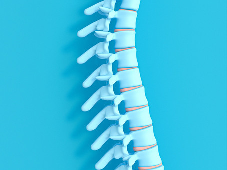 Estudo descobre potencial para regeneração na medula espinhal