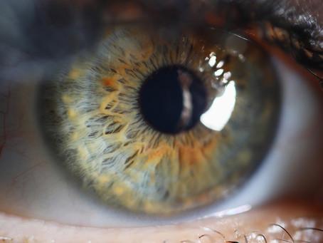 Terapia gênica com proteína sensível à luz consegue restaurar visão em estudo