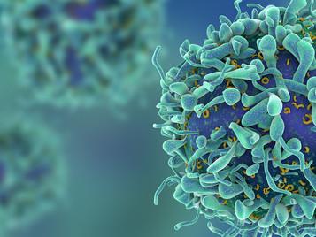 Combinação inusitada de drogas cria quimioterapia imunogênica