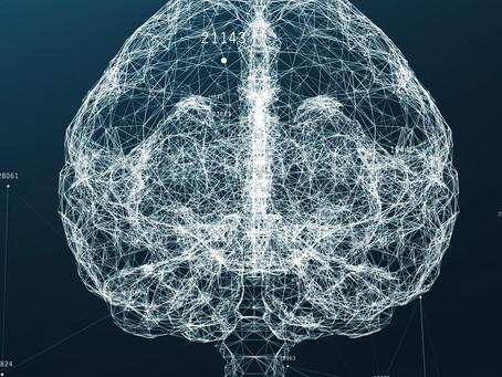 Estudo desvenda mecanismo que pode levar a novos tratamentos para epilepsia