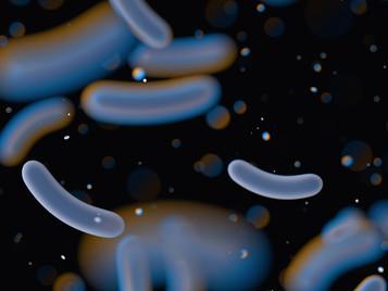 Identificado possível alvo terapêutico contra bactéria não tratável com antibióticos